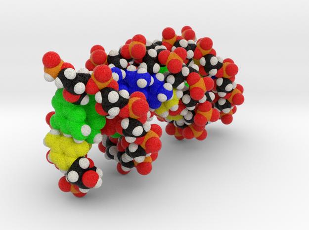 Custom DNA Molecule Model, Standard Size in Full Color Sandstone