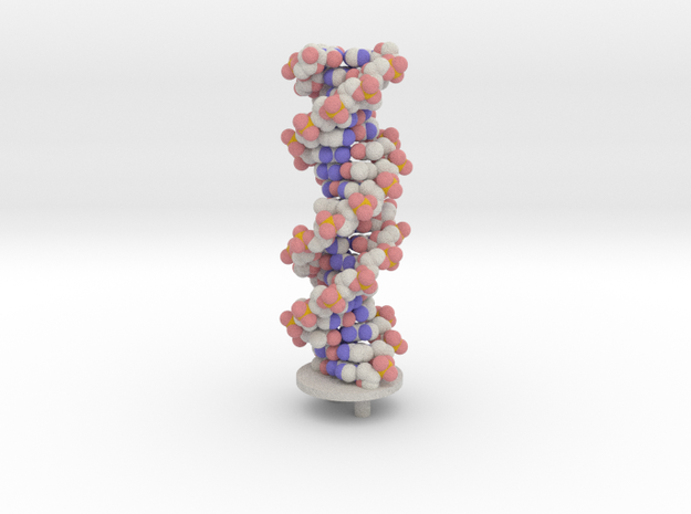 DNA sphere with support in Full Color Sandstone