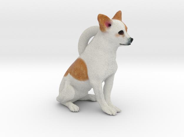 Custom Dog Earrings - Burrito