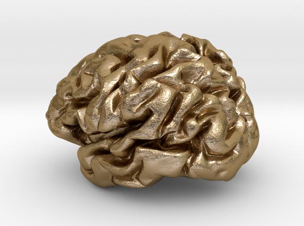 Brain Beer Twist Opener Metal in Polished Gold Steel