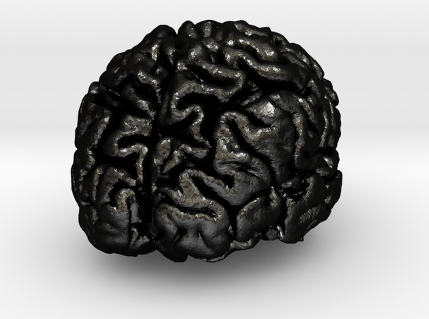 Precious metal brain pendant from MRI scan