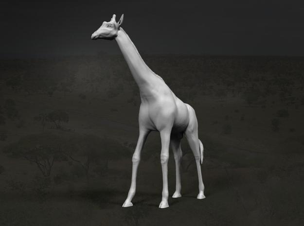 Giraffe 1:12 Standing Male in White Strong & Flexible
