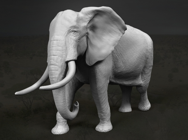 African Bush Elephant 1:87 Walking Male 3d printed