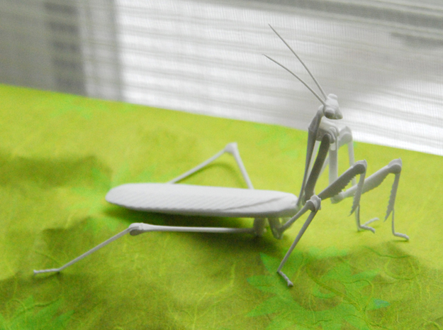 Articulated Mantis in White Natural Versatile Plastic