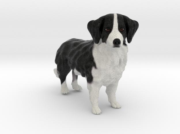 Custom Dog Figurine - Harry in Full Color Sandstone