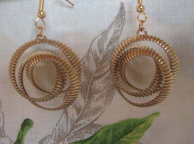 Coil 2 3 Variation V1 Earrings