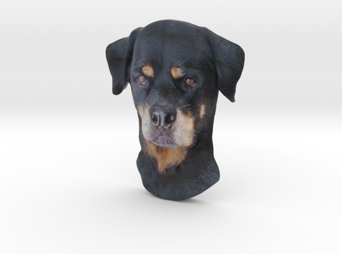 Full color Rottweiler Reliëf