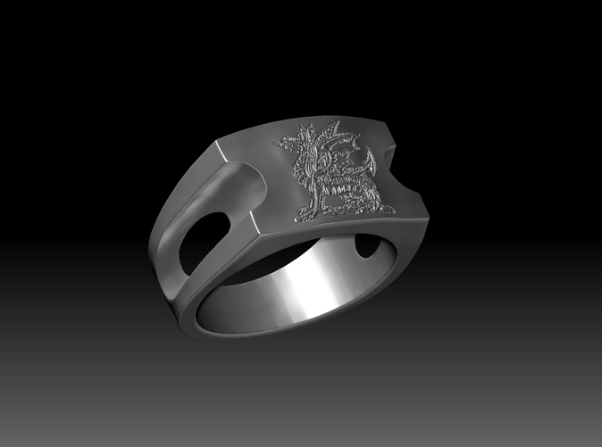 A custom ring. Currently available as a size 10.5