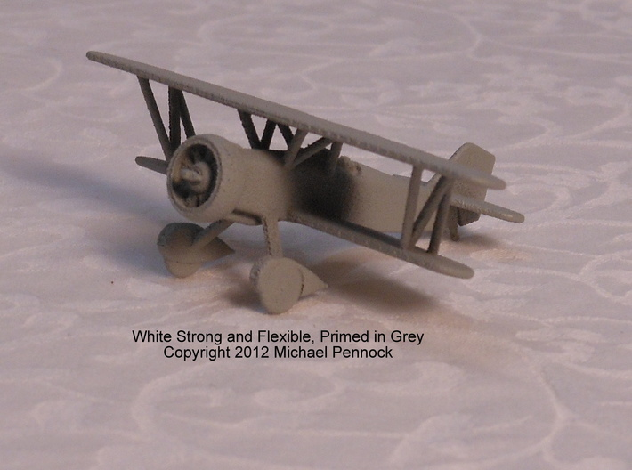 IW01A Curtiss Hawk II (1/100) 3d printed