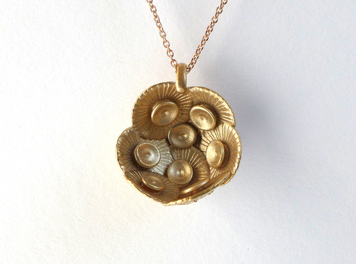 Coccolithus Pendant  3d printed Coccolithus pendant in raw bronze, back