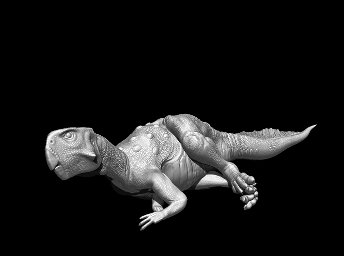 Psittacosaurus Resting 1:12 scale model 3d printed