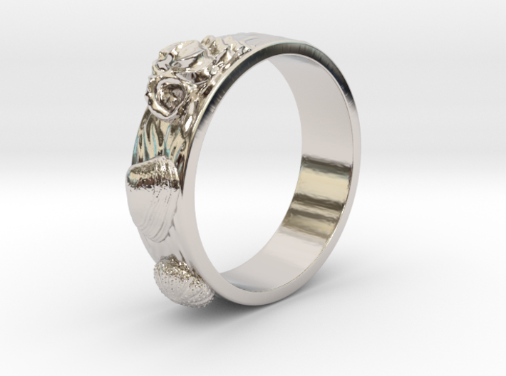 Sea Shell Ring 1 - US-Size 4 1/2 (15.27 mm) 3d printed