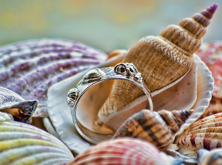 Sea Shell Ring 1 - US-Size 4 (14.86 mm) 3d printed Seashell Ring in polished silver (shown: size 10)