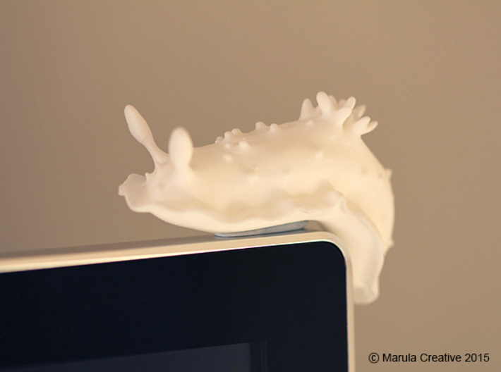 Doris the Nudibranch 3d printed White Strong & Flexible Polished - on computer monitor!