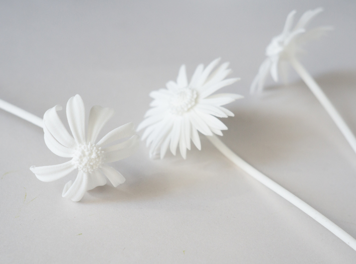 Picked Daisy 2 3d printed