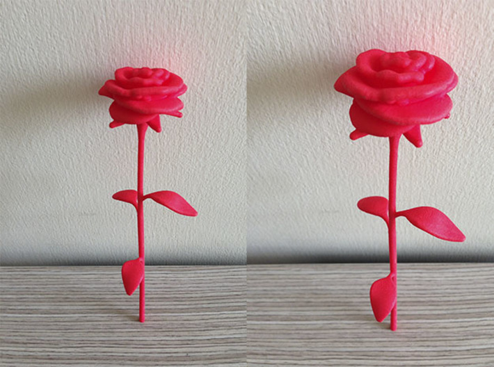 Rose 3d printed Red Strong Flexible Polished Rose Shapeways 3D print