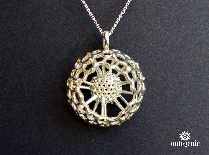 Spumellaria spineless Radiolarian - Science Jewelr 3d printed Spumellaria spineless pendant in polished silver