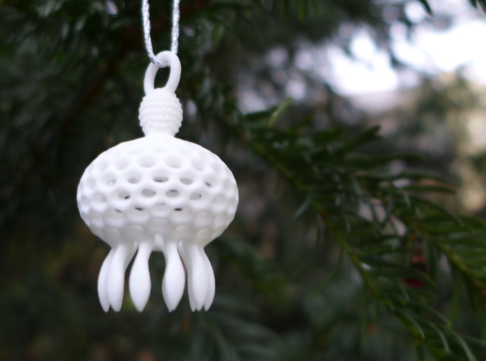Anthocyrtium Ornament - Science Gift 3d printed