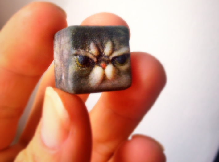 Grumpy Cat Cube / Animal Cubes 3d printed