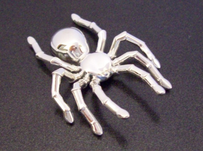 Spider Pendant 3d printed Silver without pendant