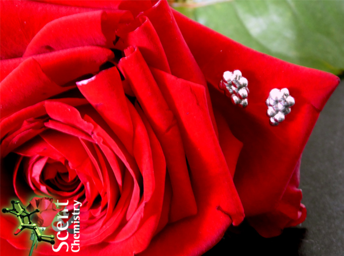 Phenylethanol Ear Studs 3d printed  Rhodium-plated phenylethanol ear studs 'worn by' a real rose.