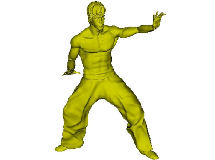 1/15 scale Bruce Lee fighting figure 3d printed