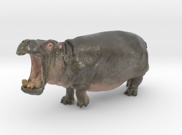 Hippo mini size (color) 3d printed