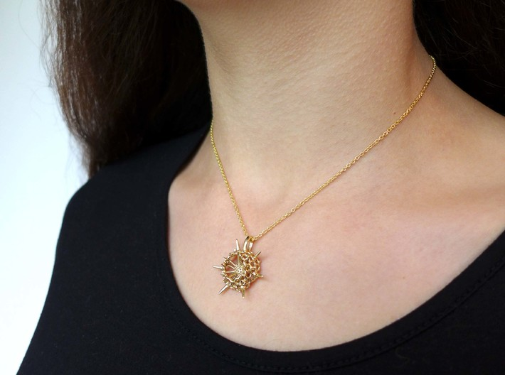 Small Spumellaria Pendant - Science Jewelry 3d printed Small Spumellaria Pendant  in polished brass