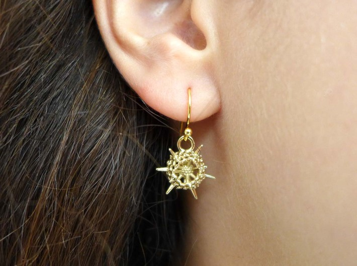 Spumellaria Earrings - Science Jewelry 3d printed Spumellaria earrings in polished brass