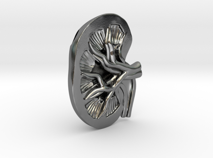 Anatomical Kidney Pendant 3d printed