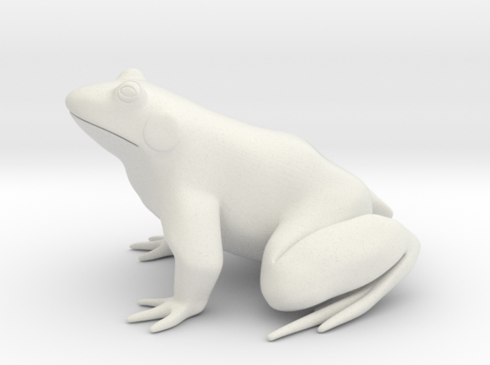 Frog, solid 3d printed