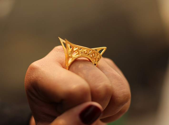Parallel Universe Ring 3d printed