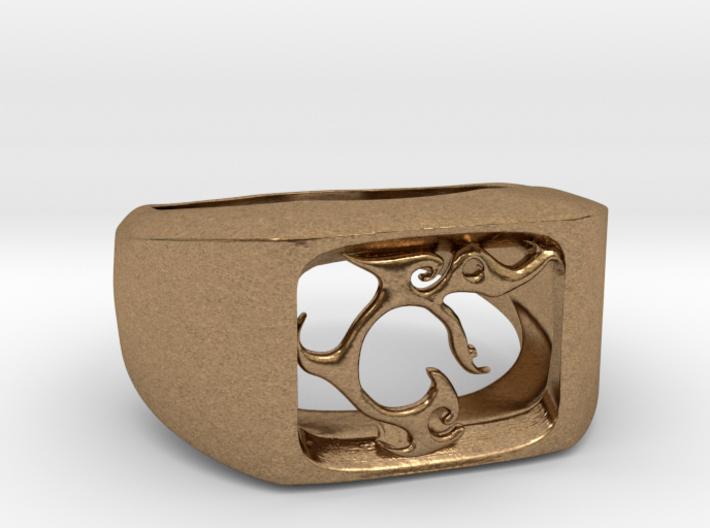 Segunda - The One Ring 3d printed