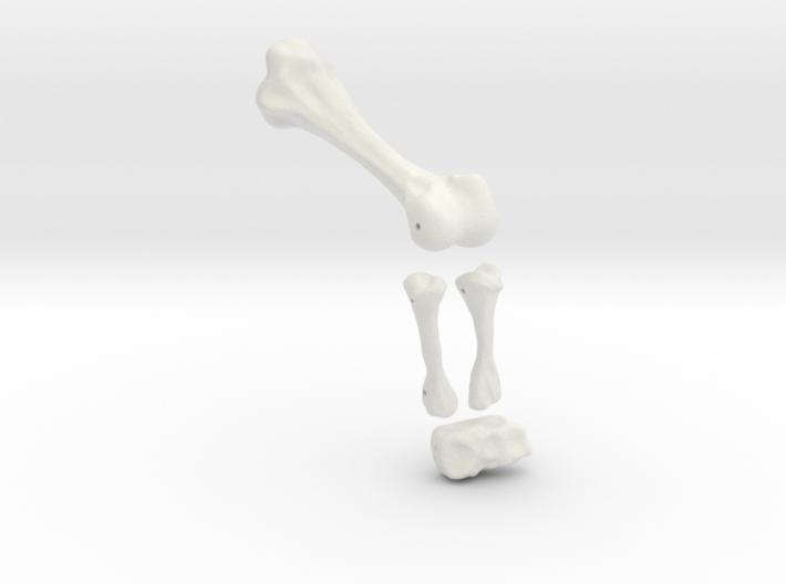 Komodo Left Leg Back 1:5 Scale 3d printed