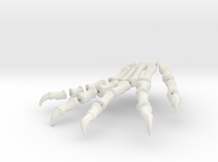 Komodo Left Foot Front 1:5 Scale 3d printed