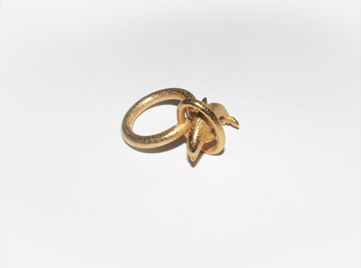 Dolplin Ring (US Size12) 3d printed Gold Plated Glossy