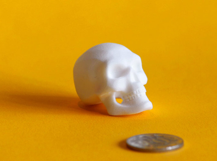 3D Printed Skull - Large 3d printed Next to an Australian 10cent piece to show the approximate size of the Skull