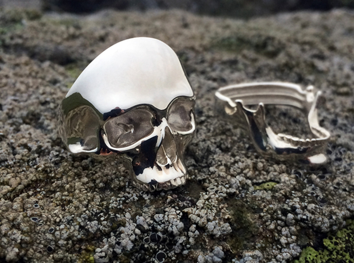 Skull Ring 3d printed Skull and Jaw rings in polished silver, size 10