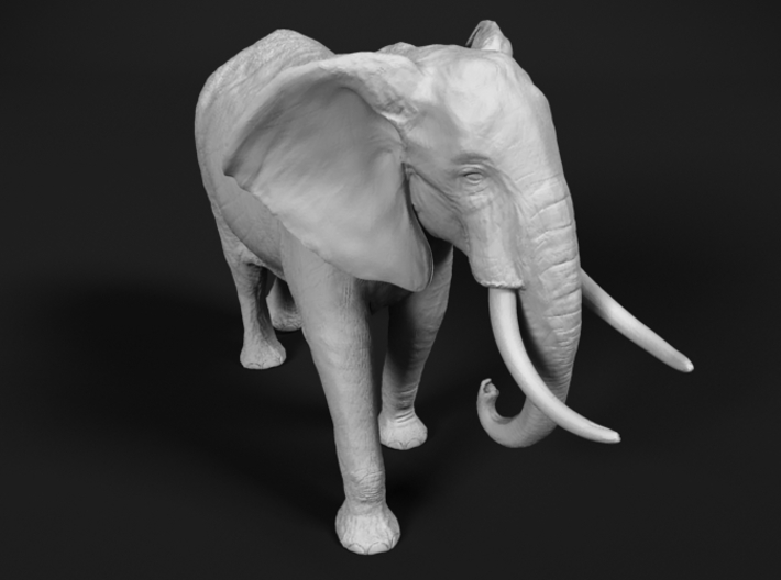 African Bush Elephant 1:22 Walking Male 3d printed