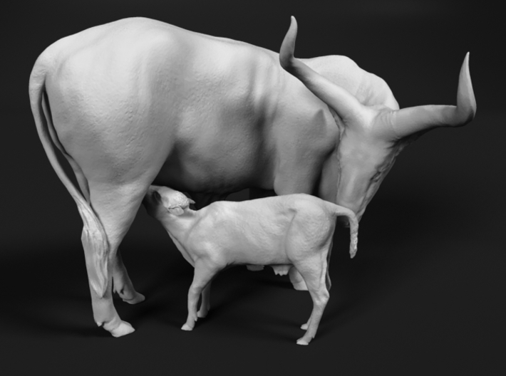 Ankole-Watusi 1:76 Mother and Calf 3d printed