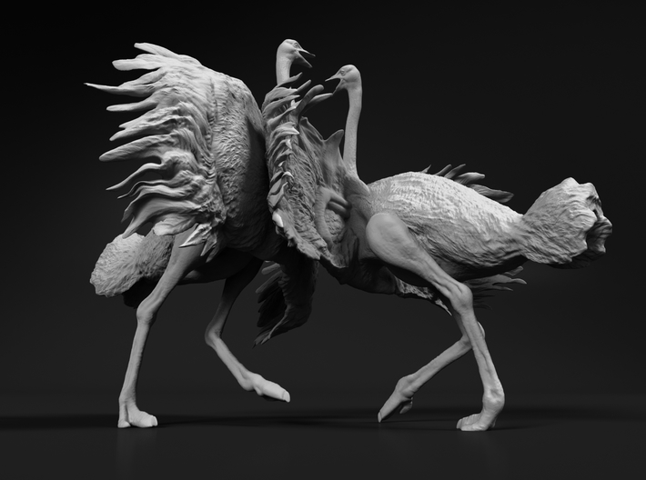 Ostrich 1:12 Fighting Pair 3d printed