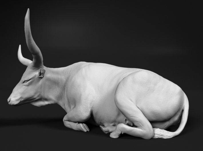 Ankole-Watusi 1:48 Lying Female 2 3d printed