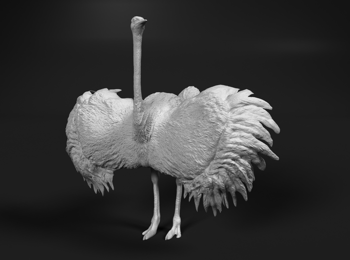 Ostrich 1:32 Wings Spread 3d printed
