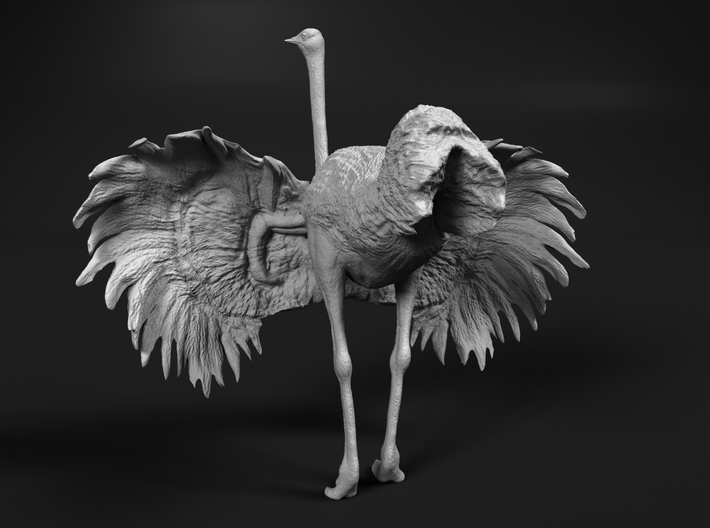 Ostrich 1:22 Wings Spread 3d printed