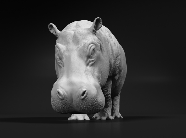 Hippopotamus 1:32 Walking Female 3d printed
