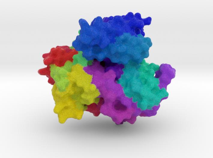 Cytochrome P450 3d printed