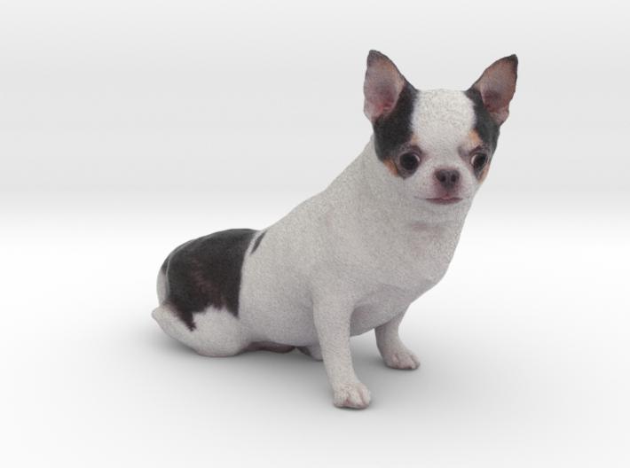 Scanned Chihuahua Dog -888 3d printed