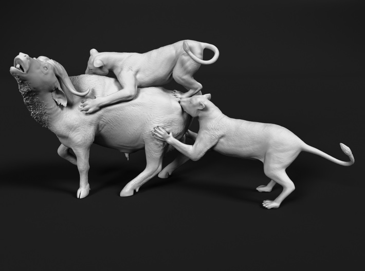 Cape Buffalo 1:25 Attacked by Lions 3d printed