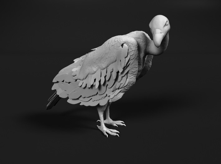 White-Backed Vulture 1:45 Standing 2 3d printed