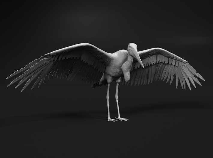 Marabou Stork 1:35 Wings Spread 3d printed